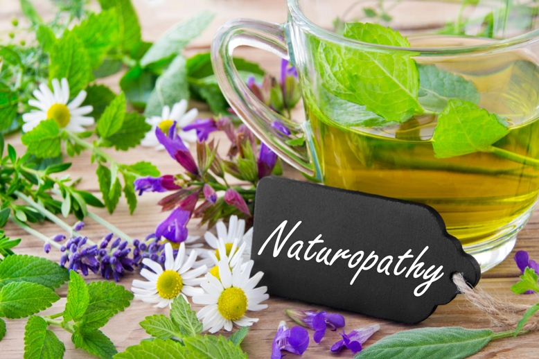 Naturopathy Certificate Courses in Delhi Naturopathy Certificatification